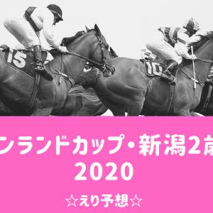 【競馬】キーンランドカップ・新潟2歳S 2020☆えり予想