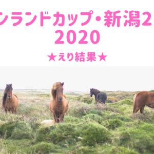 【競馬】キーンランドカップ・新潟2歳S 2020★えり結果&反省会