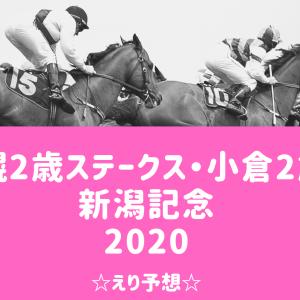 【競馬】札幌2歳ステークス・小倉2歳S・新潟記念☆えり予想