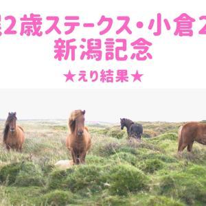 【競馬】札幌2歳ステークス・小倉2歳S・新潟記念☆えり結果