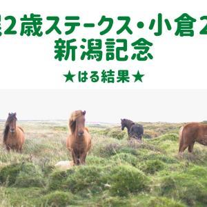 【競馬】札幌2歳ステークス・小倉2歳S・新潟記念☆はる結果&必勝法