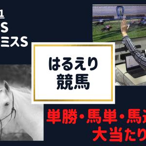 【はるえり競馬】2020.10.31|スワンステークス・アルテミスステークス