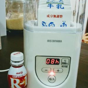 【節約】R-1ヨーグルトを増殖させる!