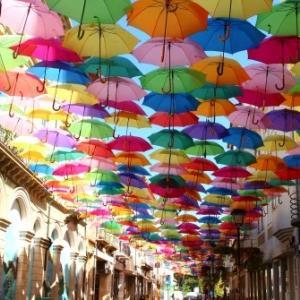 今天在我的博客上排名第一的葡萄牙人! !!