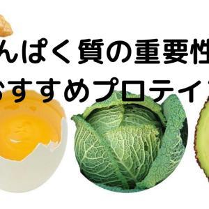 たんぱく質の重要性とおすすめプロテイン