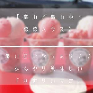【富山/富山市・徳徳ハウス】暑い日にぴったり!!ひんやり美味しい「けずりいちご」