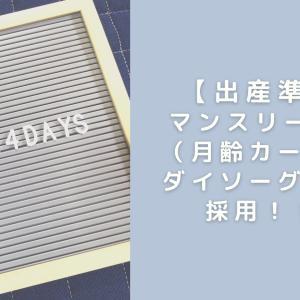【出産準備】 マンスリーカード (月齢カード)は ダイソーグッズを採用!!!