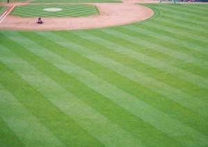 「カープ」チューハイで、野球を見ながらいっぱいやりましょ!