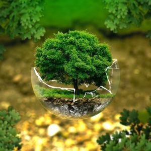 ESG投資とは?なぜ重要なのか?