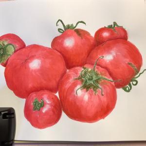 エミータスケッチ77/トマト/トマトソース作り
