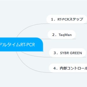 リアルタイムRT-PCR