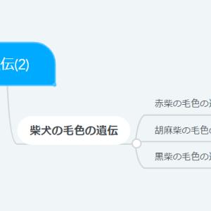 【13】遺伝(2)