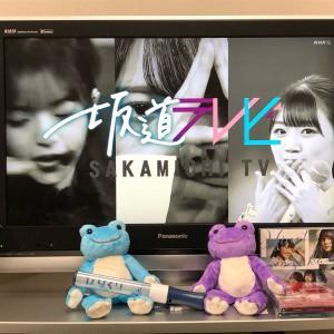 坂道テレビを見ました!