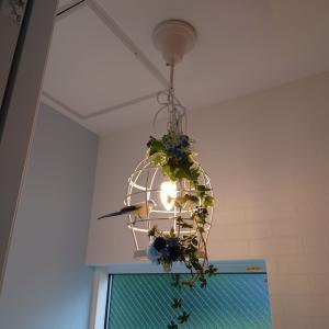 こだわりの照明設備を実現するために必要なこと