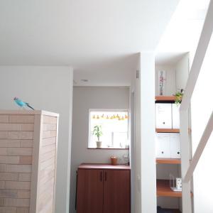 新しい家を建てるからこそ壁や天井の下地補強を考える