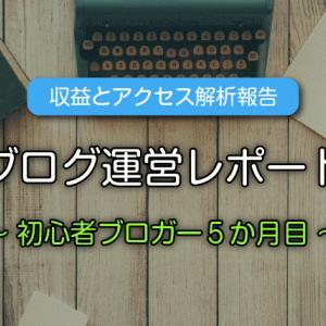 【収益公開】ブログ初心者5か月目の運営報告