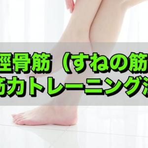 外反母趾対策や転倒予防にはコレ!足首を鍛える前脛骨筋の筋トレ方法!!