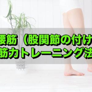 腰猫背なら筋肉を鍛えよう!姿勢改善!腸腰筋の筋トレ方法!