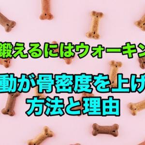 骨を鍛えるにはウォーキング!運動が骨密度を上げる理由と方法