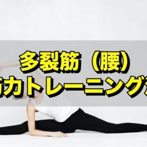 背筋を鍛えるならあの運動!多裂筋の筋トレ方法!!
