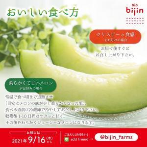 びじんメロン(日本品種)をデリバリー