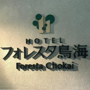 秋田県由利本荘 水風呂は贈呈品 ホテルフォレスタ鳥海