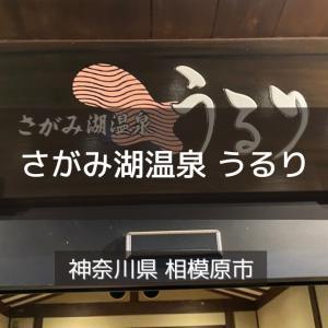 神奈川県サウナ&水風呂 さがみ湖温泉 うるり