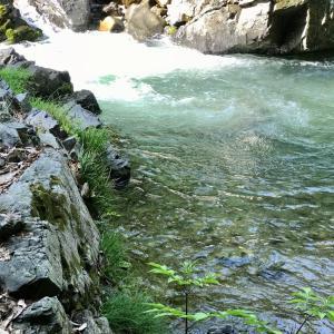 渓流トレッキング前編…滝の虹に出遭うまで