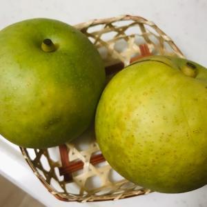 梨の旬は短くて…