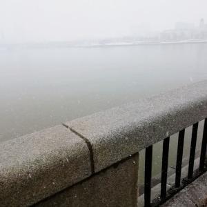 雪降る中でのお散歩