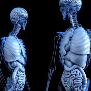 【2020年版】医療系の仕事は診療放射線技師をおすすめする理由