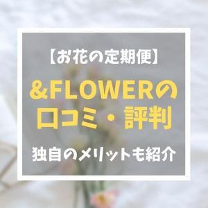 【アンドフラワー(&flower)】口コミや評判は?|独自の特徴・メリット・デメリットも紹介