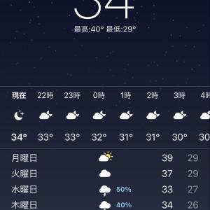 40°を更新!!!