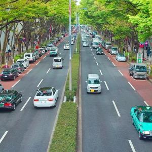 運転免許証とマイナンバーカードの一体化 早ければ2026年に実現へ