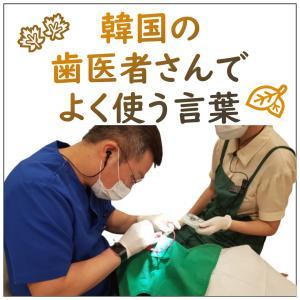 韓国の歯医者さんでよく使う言葉!