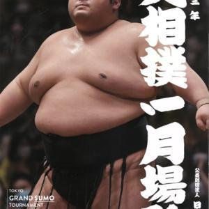 溜席(砂かぶり)で大相撲を観るには