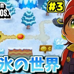 【Newスーマリ】全隠しゴール攻略で夏休みを生き残る!🌻 Part3【New Super Mario Bros.DS】