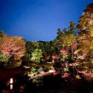 【無鄰菴】秋の紅葉🍁夜間特別公開トワイライト庭園パーティー2020へ行きました❣️