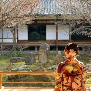 【京都で過ごすお誕生日プラン🎂】私のお誕生日の京都旅⛩
