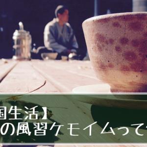 【韓国生活】韓国の風習ケモイムって何?