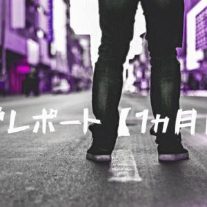 【ブログ運営レポート】ブログ初心者1ヵ月目の経過報告