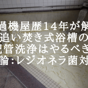 【濾過機屋歴14年が解説】追い焚き式浴槽の配管洗浄はやるべき!【結論:レジオネラ菌対策】