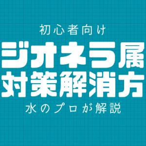 【初心者向け】レジオネラ属菌の対策・解消方法【水のプロが解説】