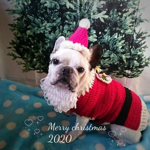 プッチャンタからメリークリスマス♪