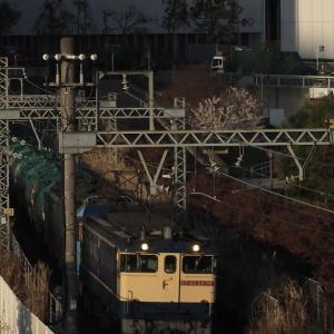 地元神奈川の異種重連、EF65+EH200を初捕獲(2021年3月24日・水曜日)