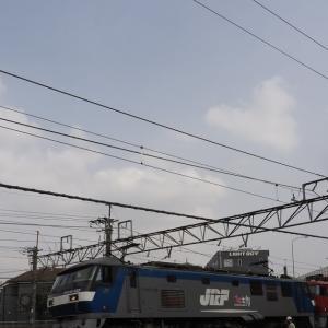 桃太郎に連れて行かれる金太郎とE235系配給列車(2021年3月30日・火曜日・その1)