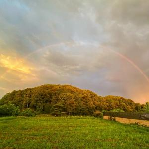 垂仁天皇陵と虹のコラボ♬