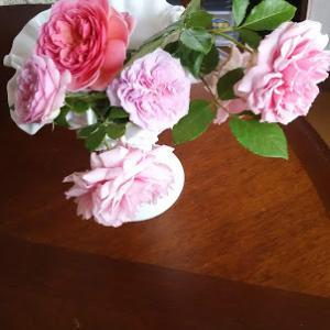 バラをカットしました 靴下の片方完成