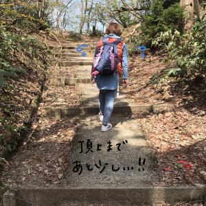 【レポ】高岡市の二上山へ登った【登山】