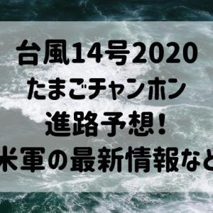 台風14号2020たまごチャンホン進路予想!米軍の最新情報など